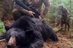 doug Bear